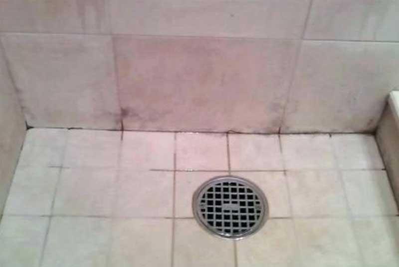 Roter Schimmel in Dusche und Bad