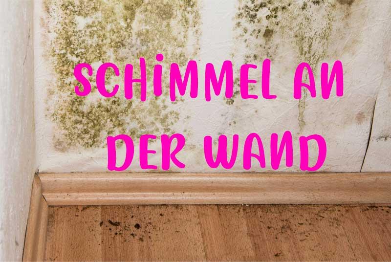 Schimmel an der Wand | Tipps zur Entfernung, Schilder von Trockenbau, Gemalt