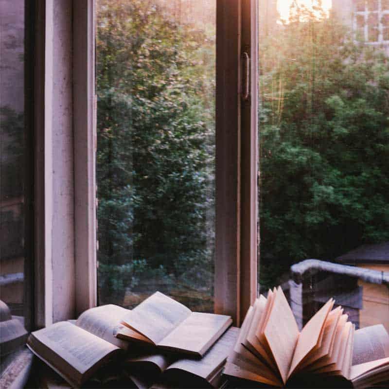 Schimmel entfernen von Bücher und Papier