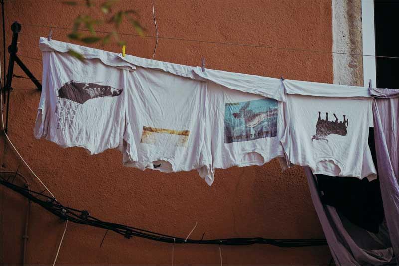 Schimmel entfernen von Kleidung