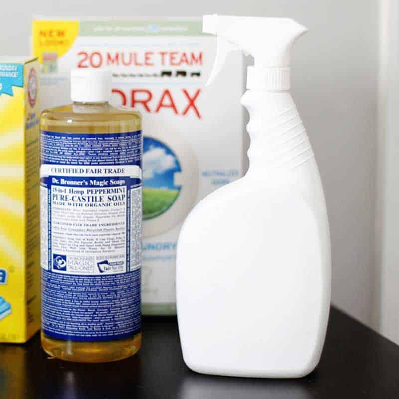 Verwendung einer Borax-Lösung zur Abtötung und Hemmung