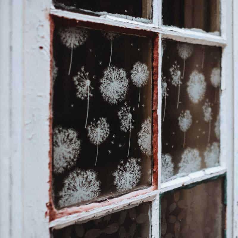 Was verursacht Schimmel am Fenster und Schimmel auf Fensterbänken?
