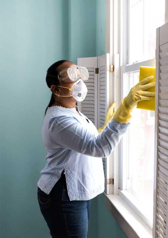 Wie man Schimmel am Fenster entfernen