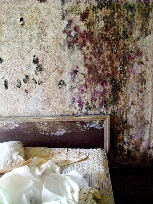 schimmel im schlafzimmer beseitigen