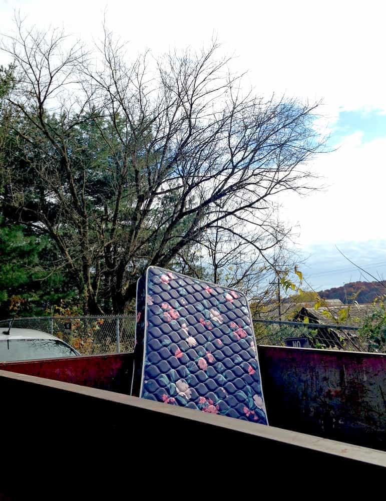 33 Bild einer verseuchten Bettwanzen-Matratze im Müllcontainer