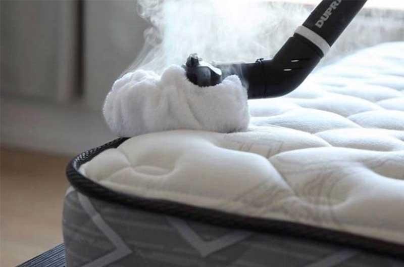 Halten Sie die Bettwanzen fern und Bettwanzen bekämpfen
