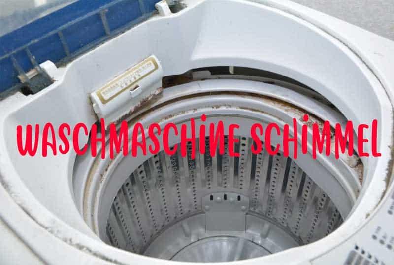 Waschmaschine Schimmel